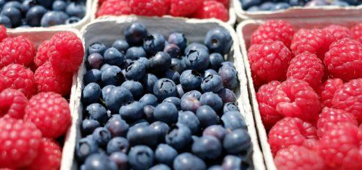 Levering af frugt og grønt fra AogC Catering